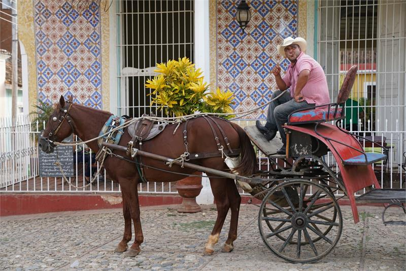 Aug 2017 - Horse drawn taxi carts in  Trinidad
