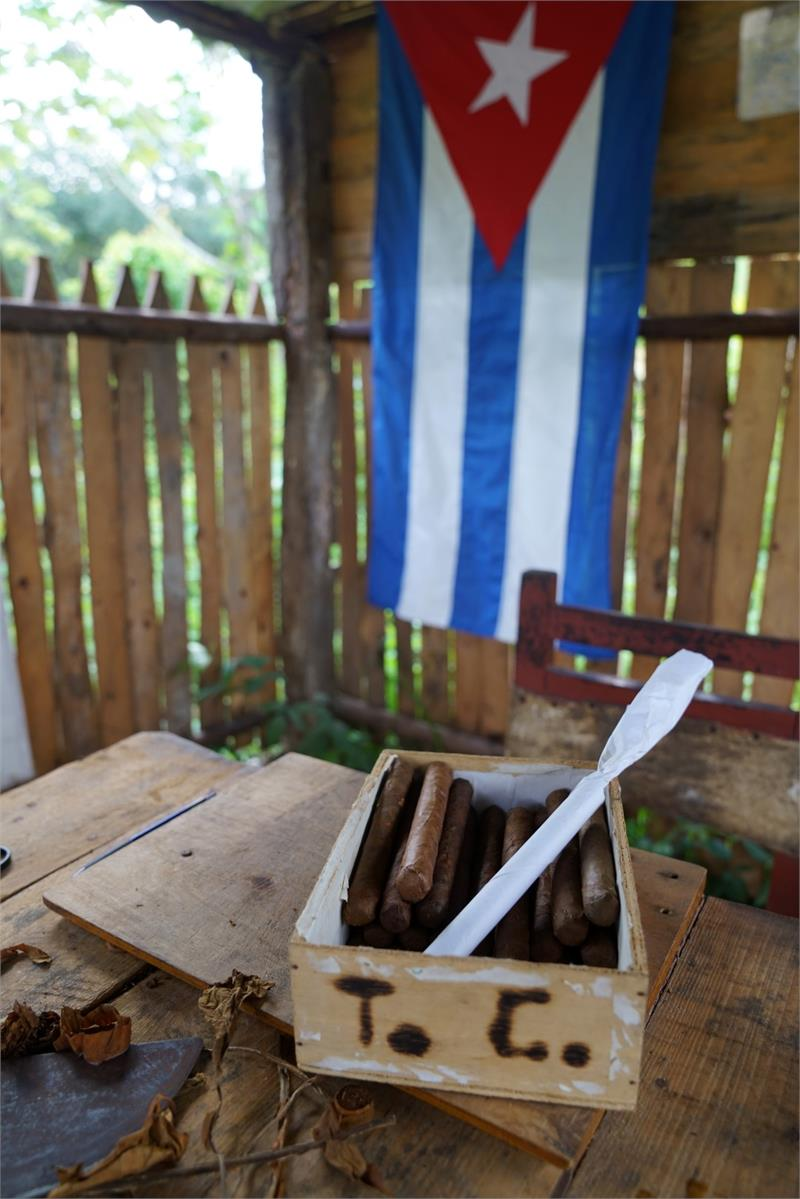Aug 2017 - Cigars at  Vinales tobacco plantation