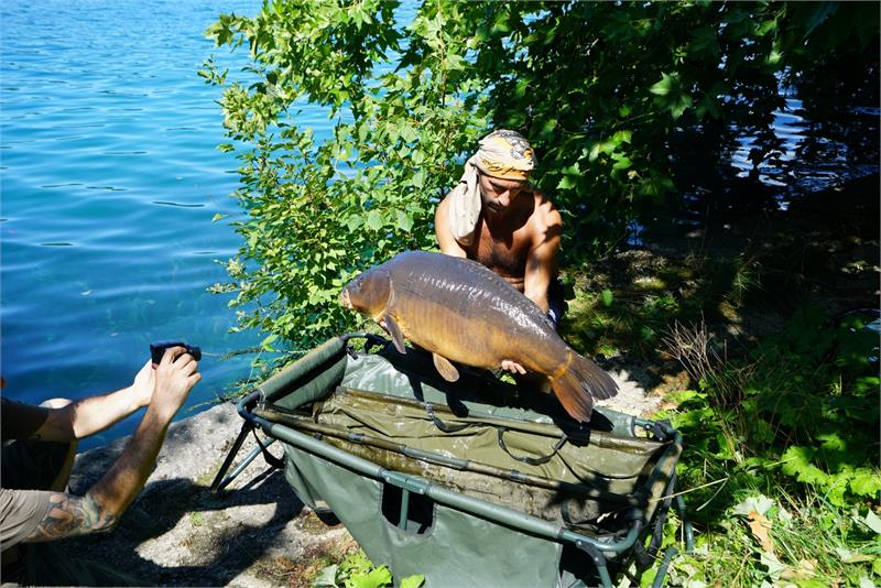 Aug 2017 - Fish caught at  Lake  Bled