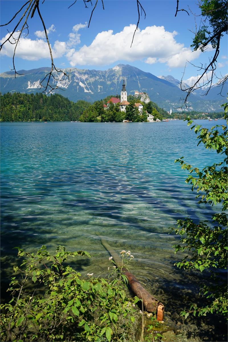 Aug 2017 - Lake  Bled 9
